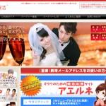 最近話題のオタク専用の婚活サイトとは何か